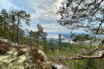 Hiking in Ringerike
