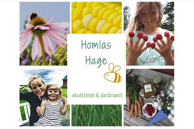 Homlas Hage - Local food experiences
