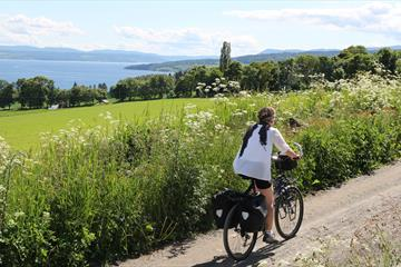 Cycling by lake Mjøsa - Bike rental in Tingnes