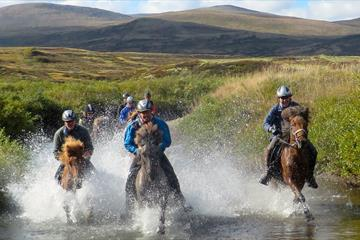 Horseback experiences - Mesna Activities & Accommodation